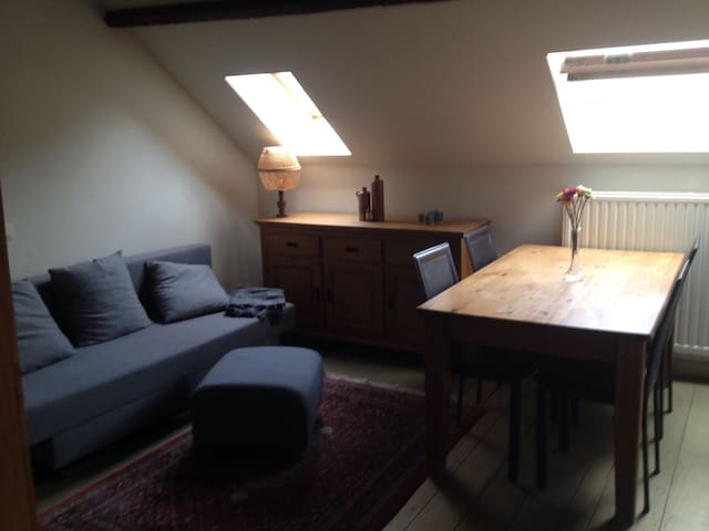 Cozy private studio under the roof in Antwerp - Antwerpen - Wohnung