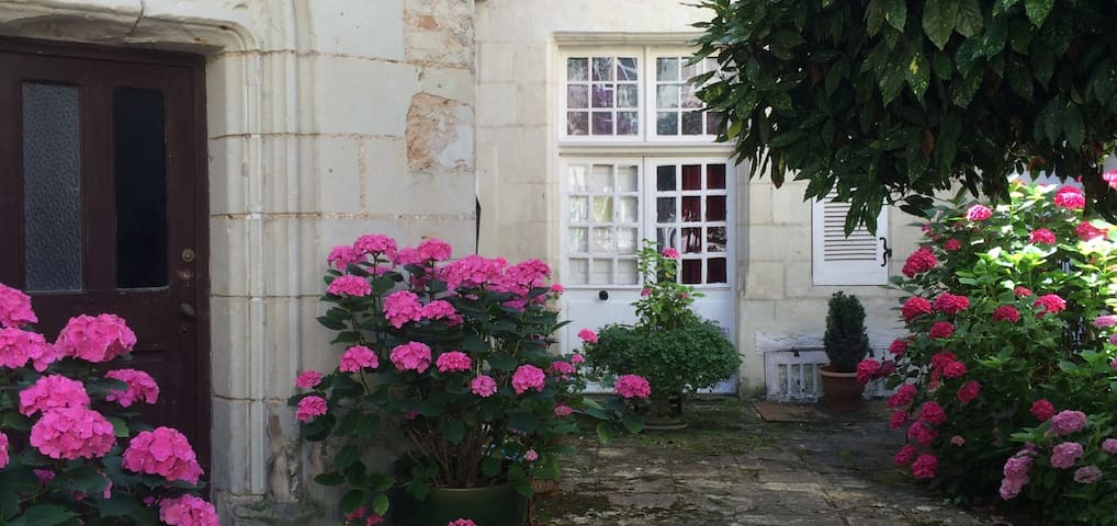 ENCHANTING, HISTORIC CHINON APT. - Chinon - Apartment
