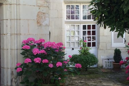 ENCHANTING, HISTORIC CHINON APT. - Chinon