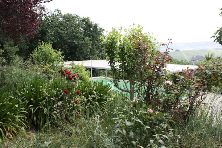 6BR Charming Villa in Le Marche - Mondavio - Villa