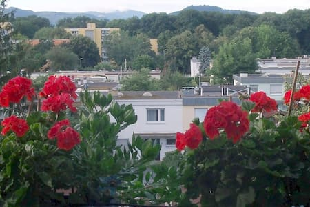 Apartment Fewo Anna 1 in Freiburg - Freiburg - Lejlighed