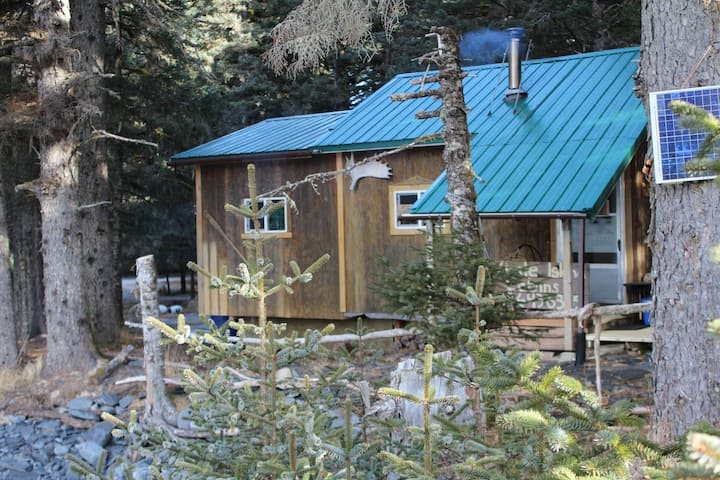 The Whale - Whale Island Cabin on the water