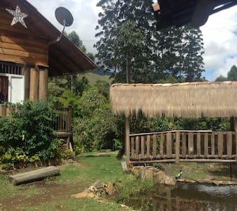 Selva y Café - Habitacion Privada - Jardín