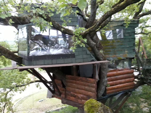 THE FUNNY TREEHOUSE B & B