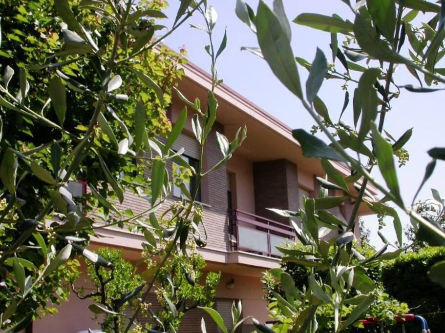 Villa Pini Civitanova Case In Affitto