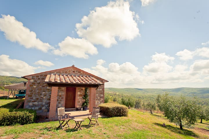 Little House in the Olive Grove - Montegabbione, Terni - Hus