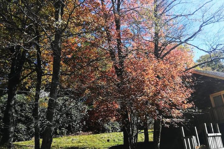 Hiview Mountain Retreat