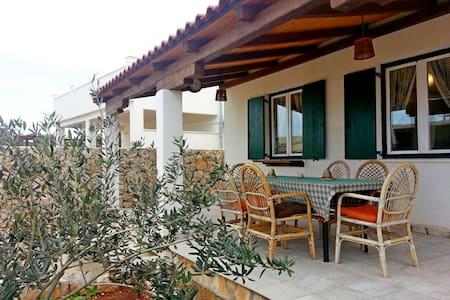 House Merica (46861-K1) - Drvenik Mali