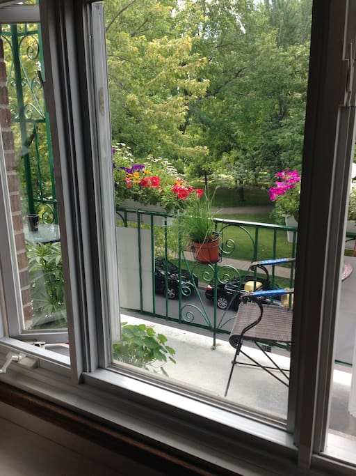 Vue de la chambre sur Parc Molson. View on the park,  from your room.