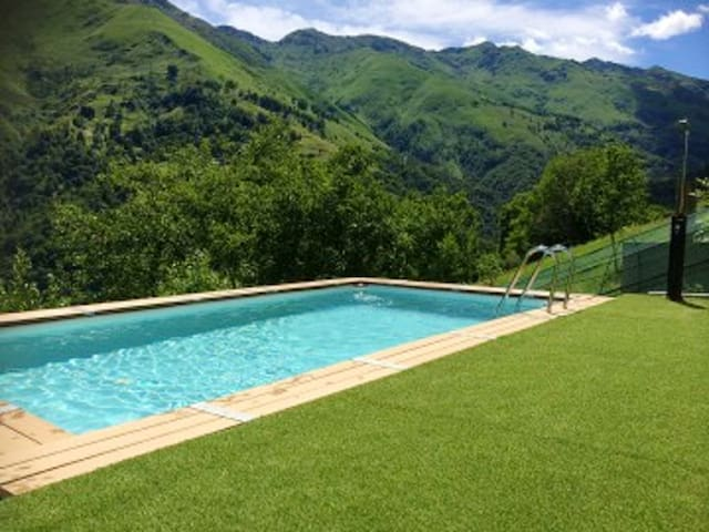 Beautiful chalet with pool access