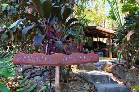 Room steps away from the greatest beach! - Santa Teresa - Haus