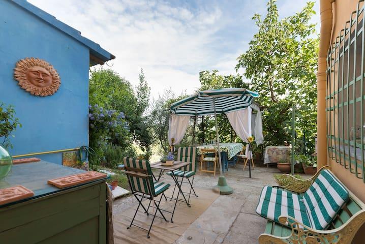 """""""Plumbago""""  studio in the garden"""