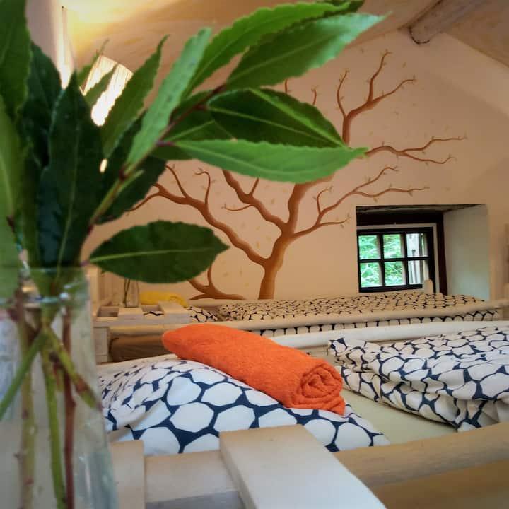 1 bed/dorm romantic watermill