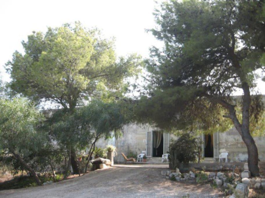 Casa vacanze circondata da pineta. Zona antistante con parcheggio