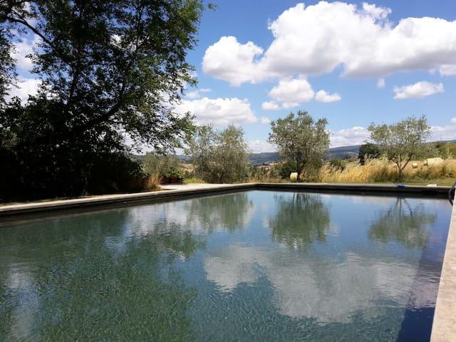 Apartment in Umbria with pool
