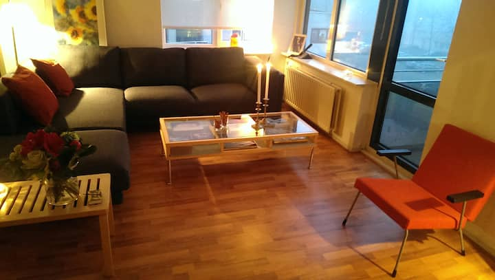 Sunny and private apartment in Amersfoort