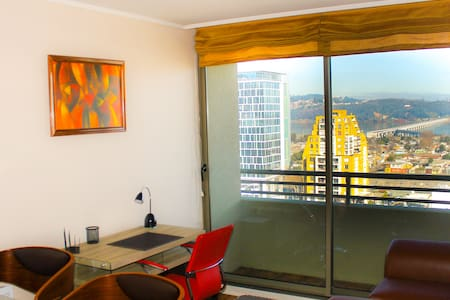 Central apartment, great river view - Concepcion