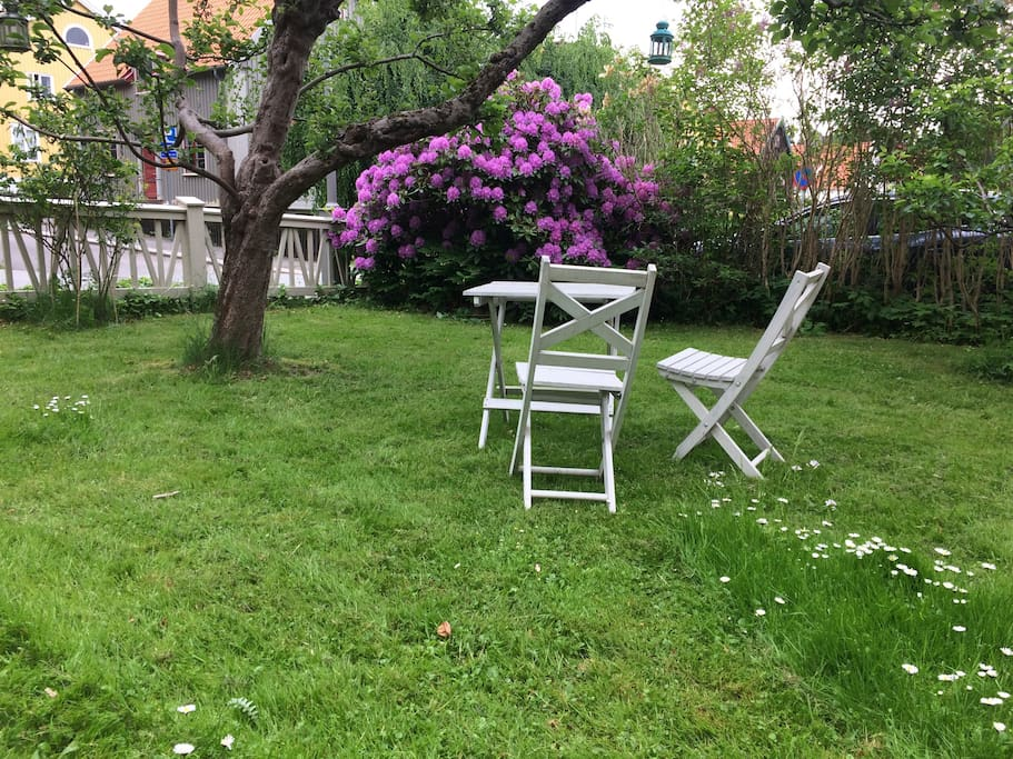 Beautiful and quiet garden close to city center