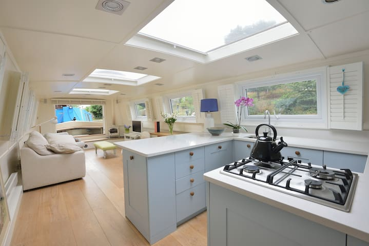 Luxurious Houseboat in Central London