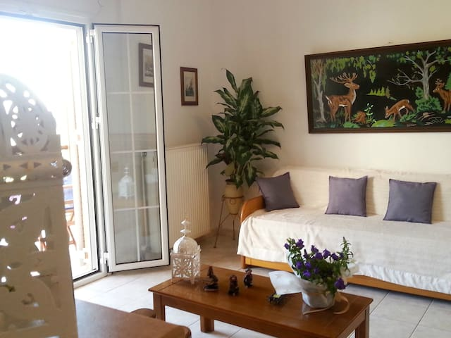 APARTMENT 3 MINUTES FROM THE BEACH TZANERIA!  2 - Skiathos - Appartement