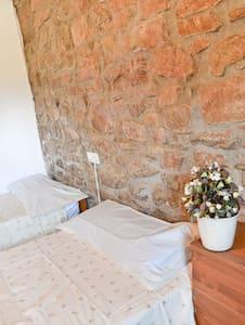 Habitación naturaleza casa rural - Muntanyola