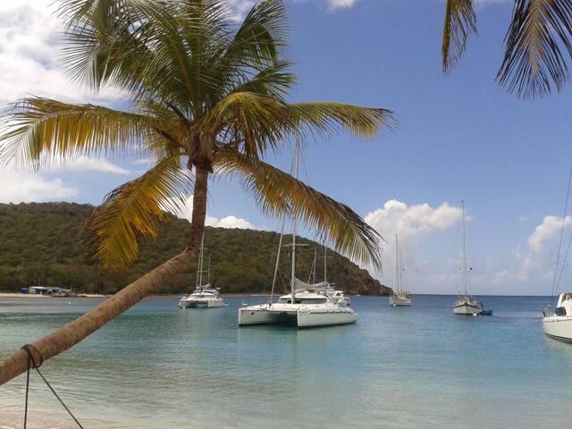 Croisière Catamaran 14m Martinique et Grenadines