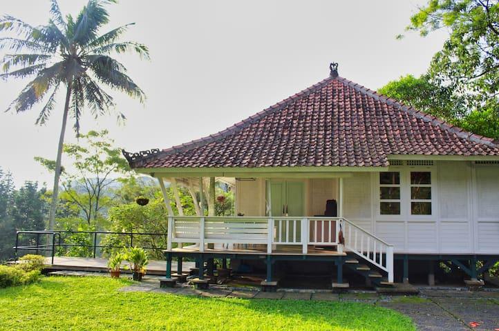 Dharma Villa Collection at Gadog
