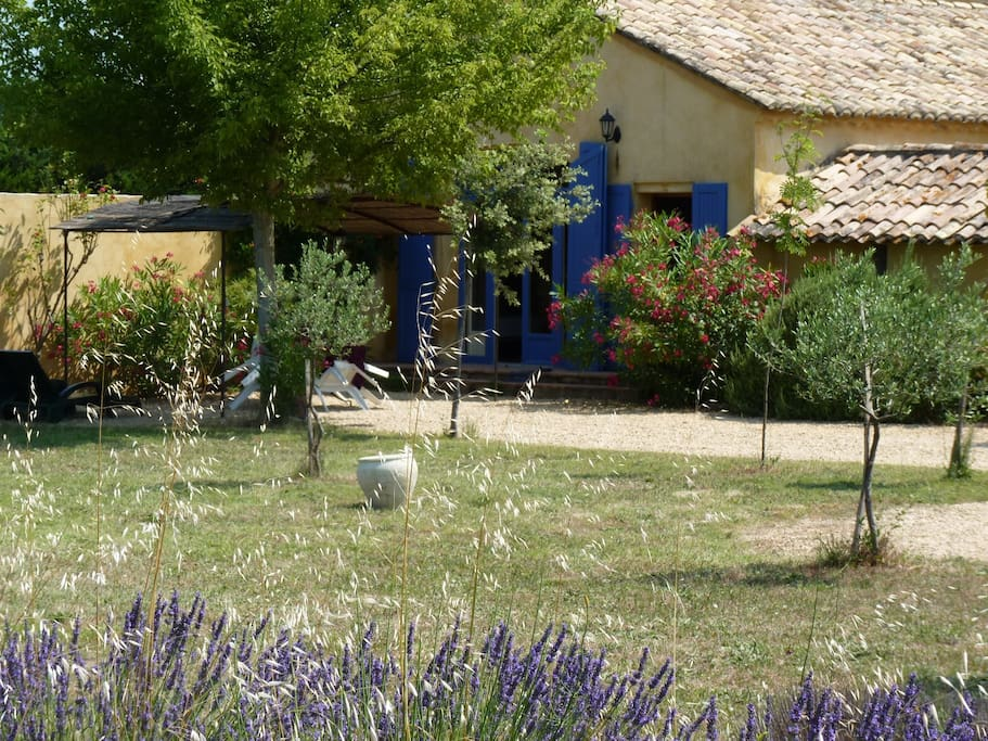 Le jardin privatif avec salon de jardin et BBQ