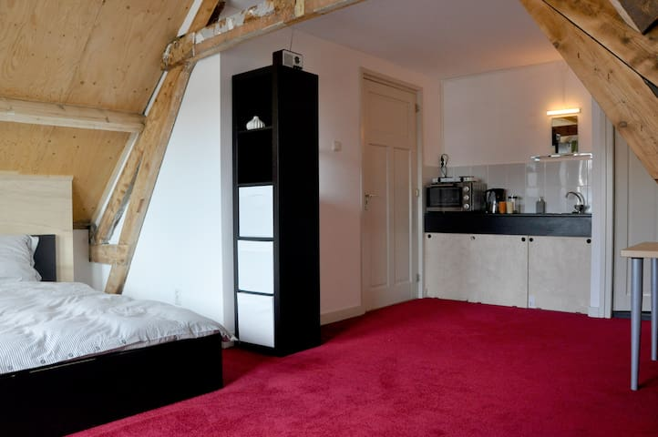 Spacious studio, near centre and CS - Rotterdam - House