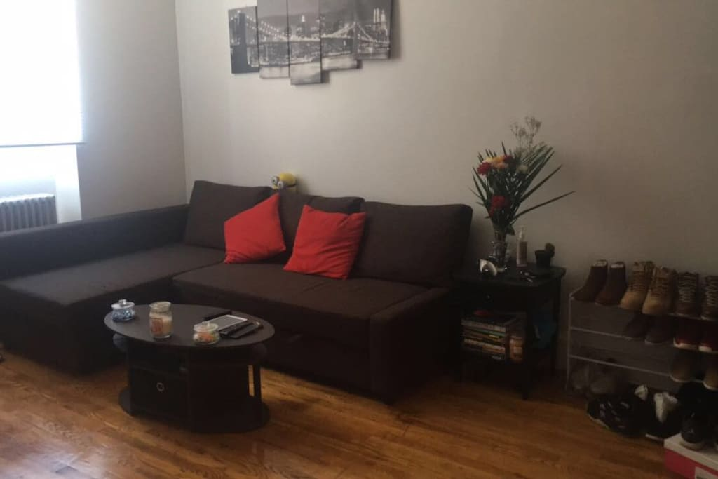 Large One Bedroom Apartment In Heart Of Brooklyn