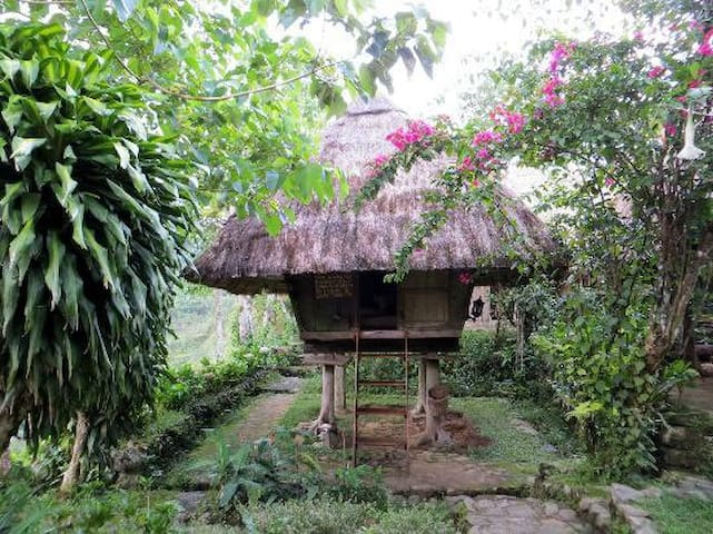 Cozy traditional Ifugao cottages - Banaue - Hut