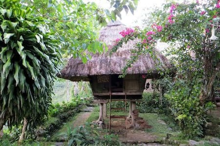 Cozy traditional Ifugao cottages - Banaue