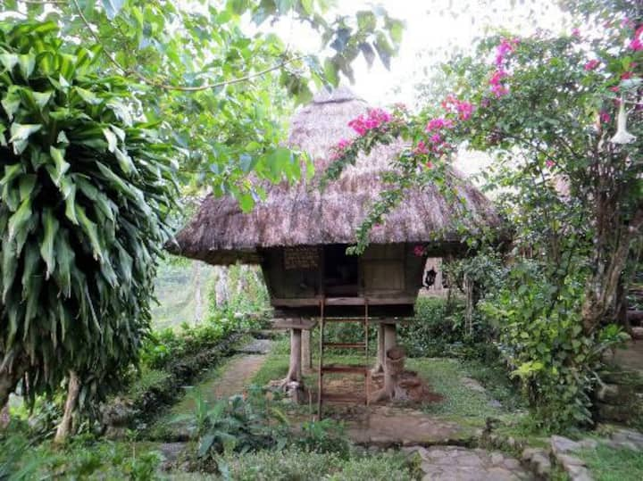 Cozy Traditional Ifugao Cottages
