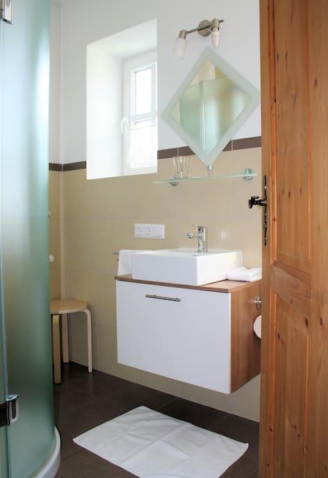 Tagelichtbad mit Wellnessdusche, Waschtisch und WC