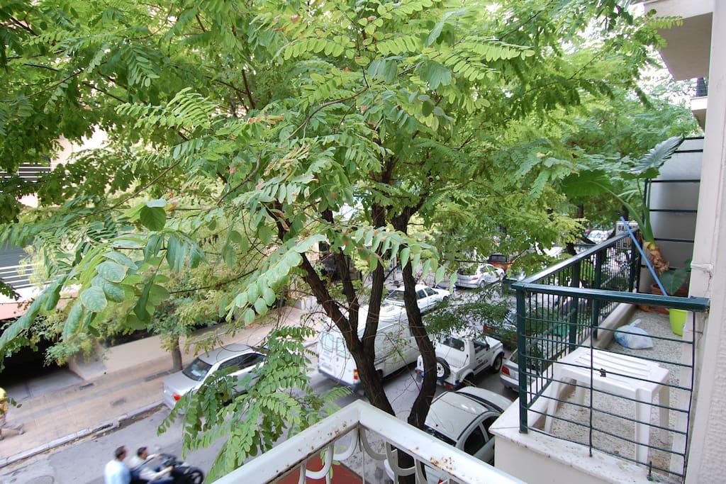 Balcony & Veranda