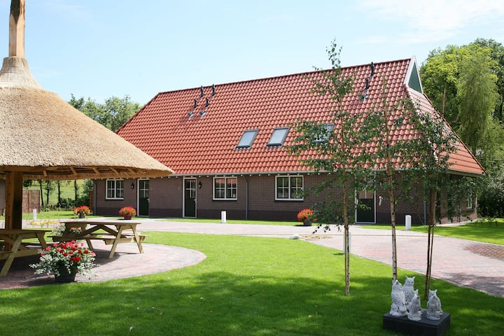 Chic Farmhouse at Overijssel with a Trampoline