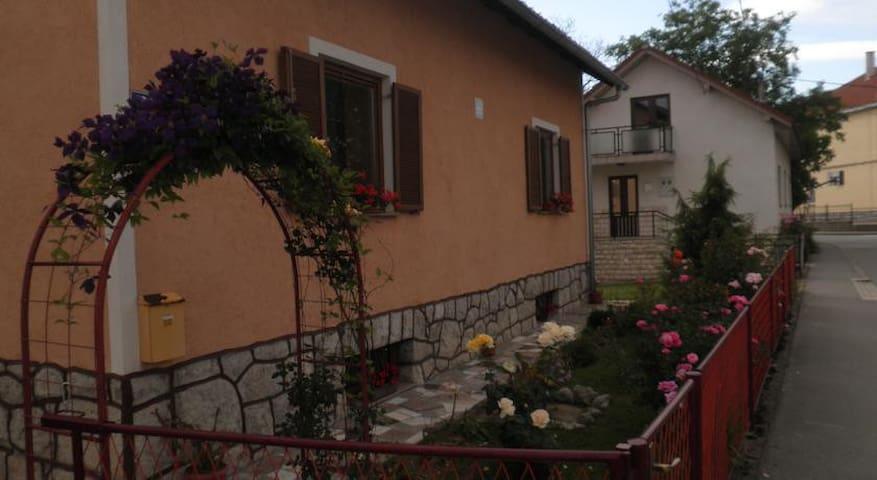 Quiet apartment with large garden
