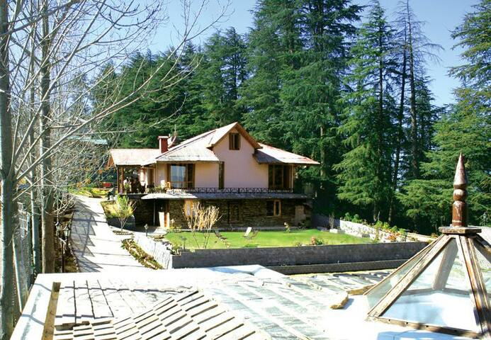 Executive Cottage | Lawn | Enchanting View - Chail - Butikhotel