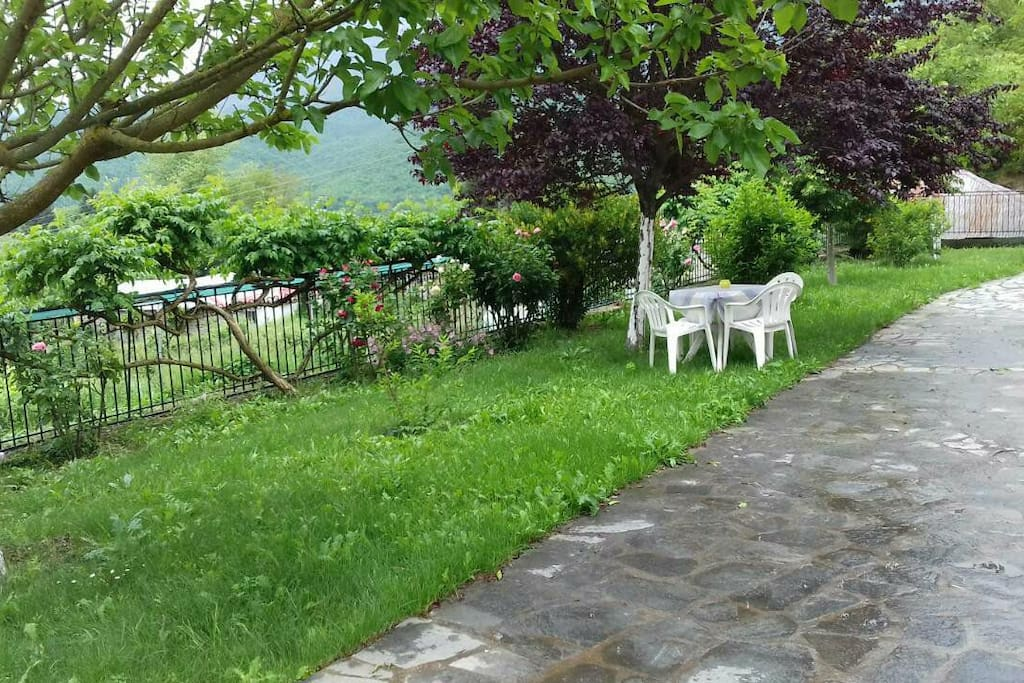 Αυλή-Κήπος