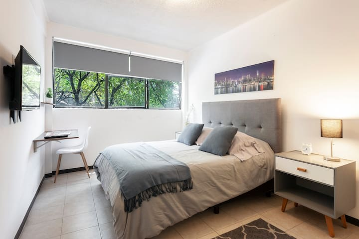 Wonderful Suite in the heart of Roma Norte