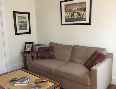 Spacious 2-bedroom home near Davis Square - 萨默维尔