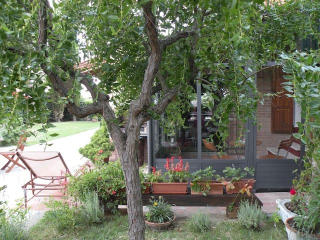 Letizia's Home - Montepulciano - Montepulciano