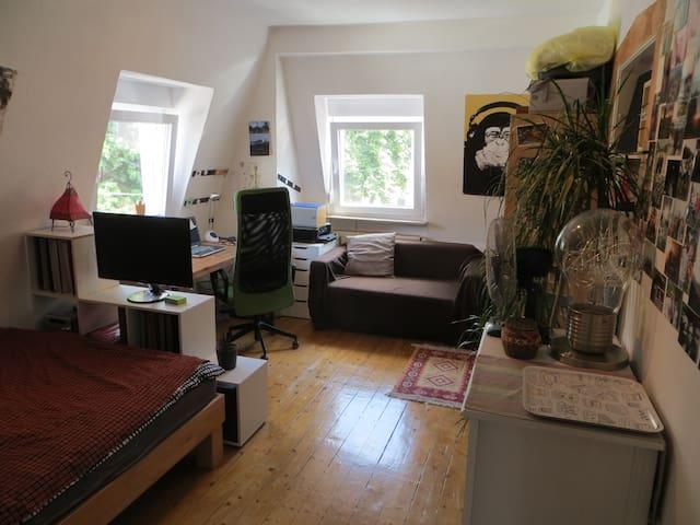 Schönes Zimmer in Studentenwohnung - Heidelberg - Wohnung