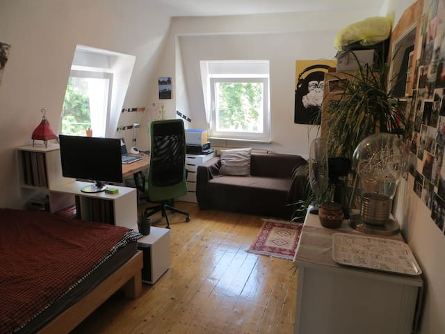 Nice room in student flat - Heidelberg - Daire