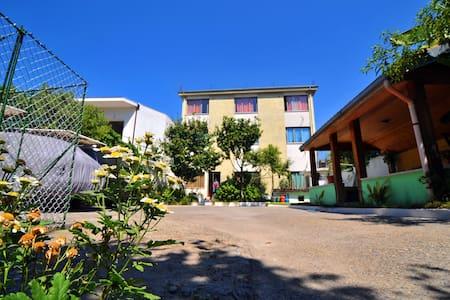 Pemaj Hostel  (relax,clean&secure) - Shkodër - Diğer