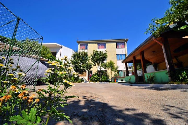Pemaj Hostel  (relax,clean&secure)