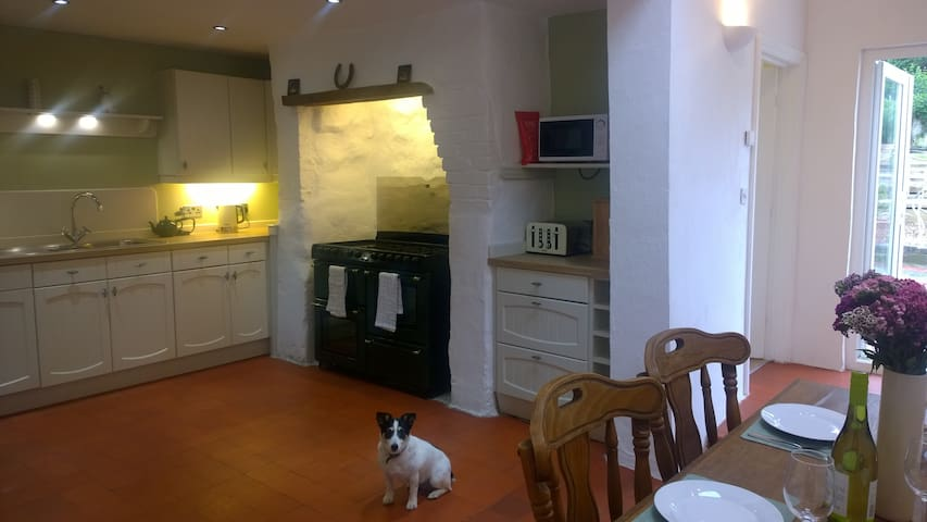 Hafan Bach - Dog friendly cottage in Kidwelly - Kidwelly - Hus