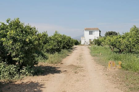 Rural house among orange trees - Vinaròs