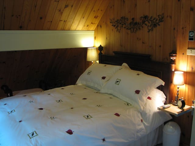 Forestview Room