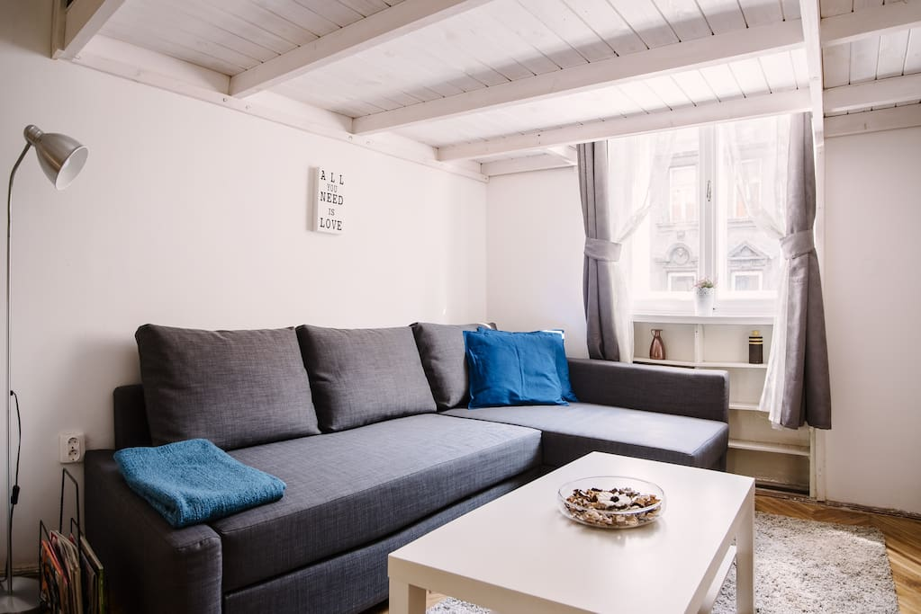 Living room with openable sofabed